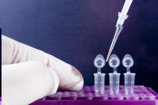 FastMix Premix e Maxime RT-PCR/PCR Premix