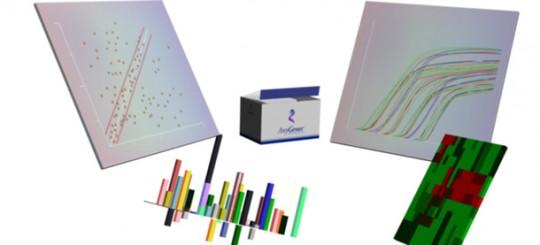 I kit SignArrays - saggi qPCR per lo studio delle vie di segnalazione