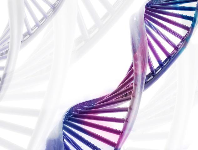 PCR, RealTime-PCR, prodotti per PCR e kits