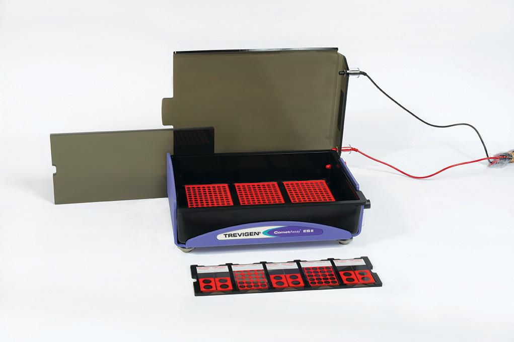 CometAssay Electrophoresis system